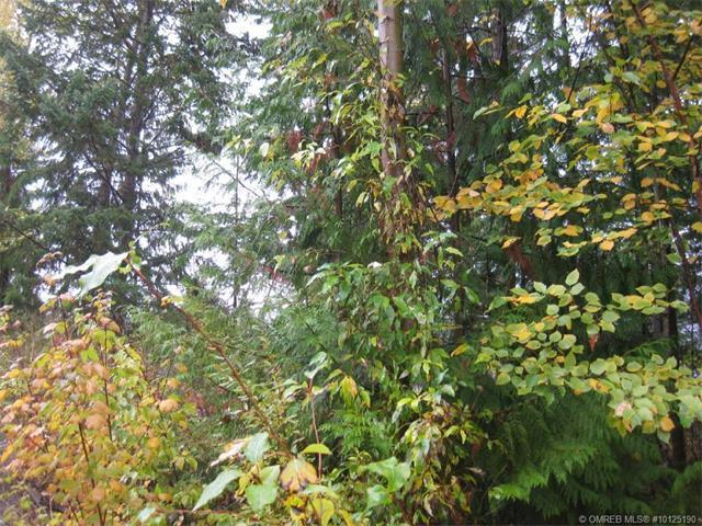 Lot 55 Waverly Drive, Blind Bay, British Columbia, V0E1H2