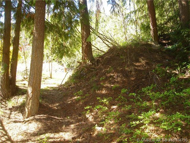 Lot 23 Forest View Place, Blind Bay, British Columbia, V0E1H2