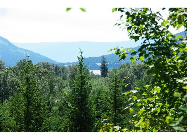 78 Old Town Road, Sicamous, British Columbia, V0E2V4
