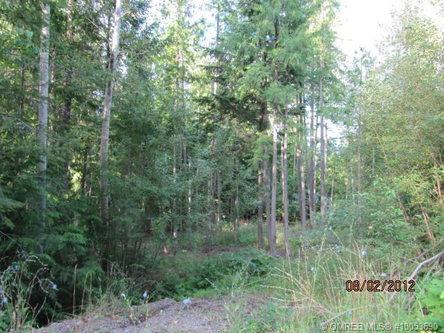 Lot 192 Estate Place, Anglemont, British Columbia, V0E1A0