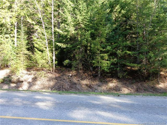 Lot 4 Cambie-Solsqua Road, Sicamous, British Columbia, V0E2V5