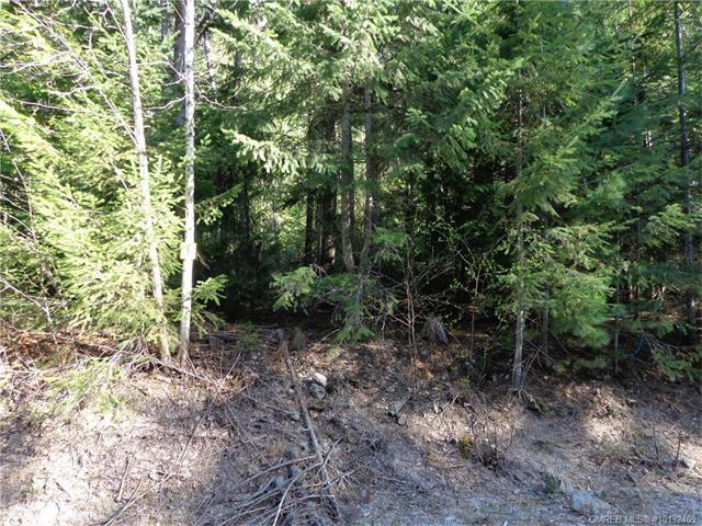 Lot 6 Cambie-Solsqua Road, Sicamous, British Columbia, V0E2V5
