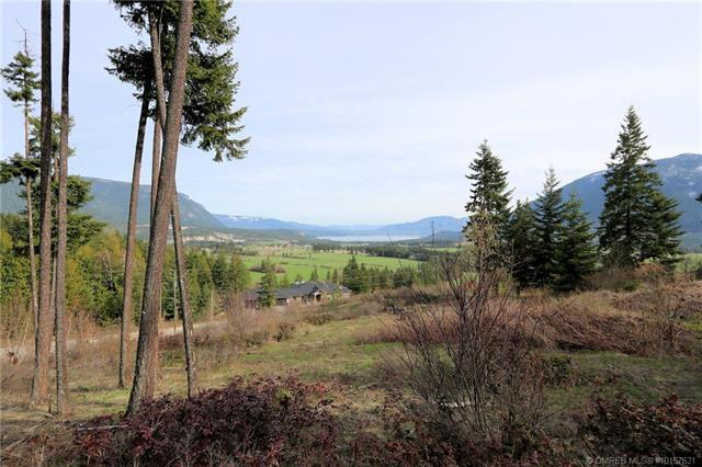 Lot 14 Recline Ridge Road, Tappen, British Columbia, V0E2X3