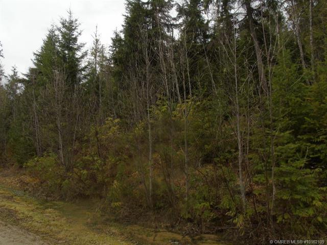 #Site 21 1055 Blueberry Road, Seymour Arm, British Columbia, V0E2V2
