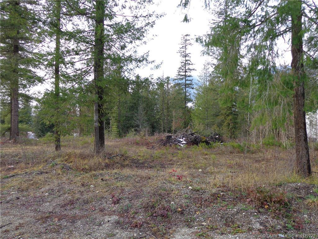 Lot 9 Malakwa Road, Malakwa, British Columbia, V0E2J0