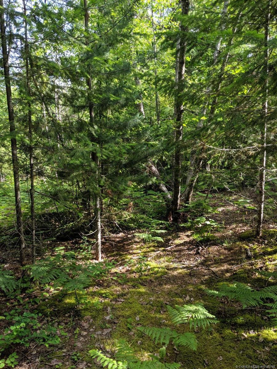 Lot 88 Tallington Drive, Celista, British Columbia, V0E1M6