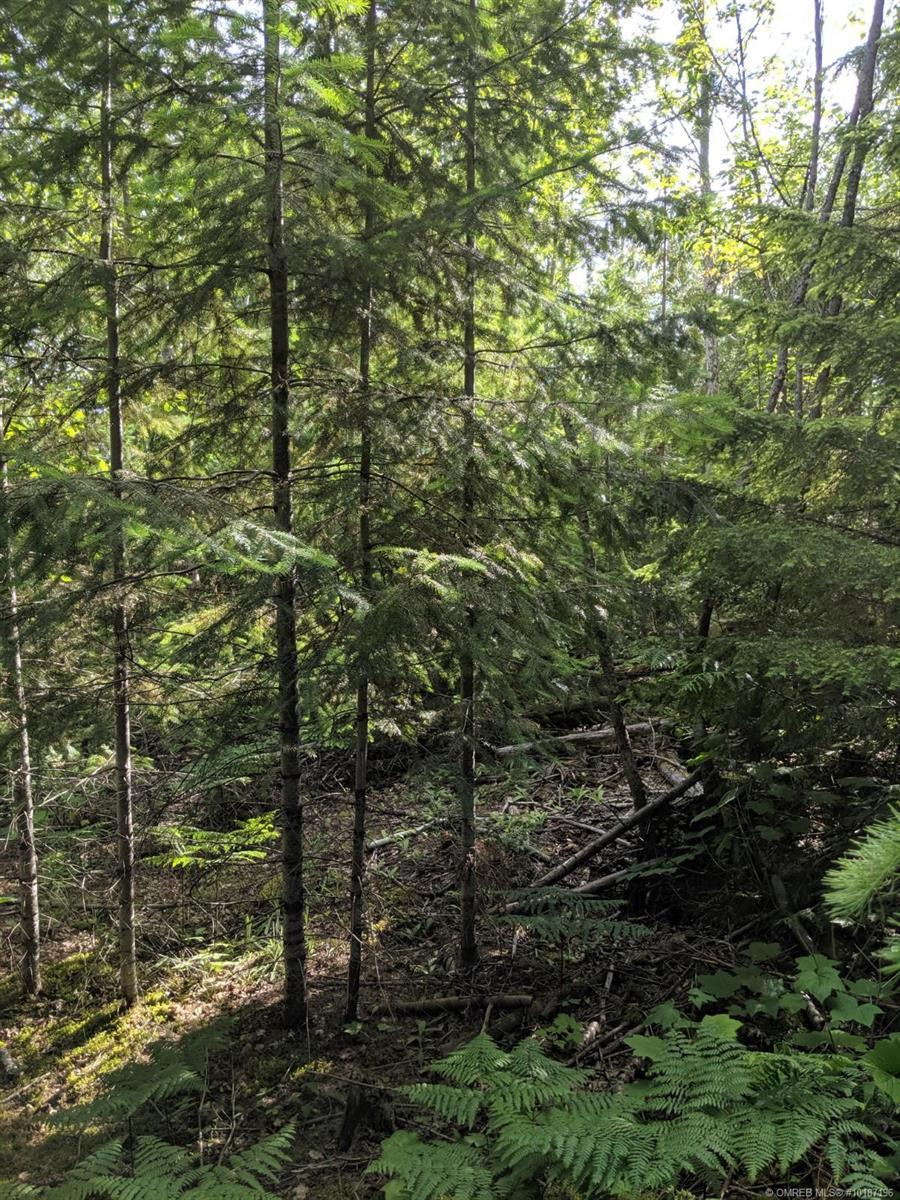 Lot 92 Anglemont Way, Anglemont, British Columbia, V0E1M8