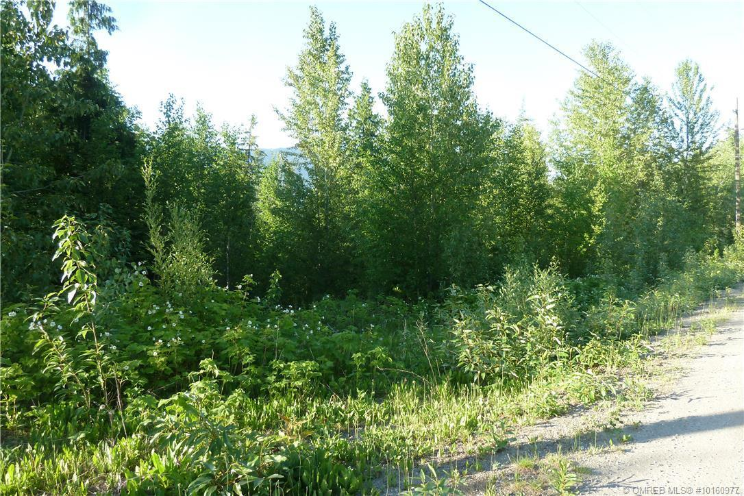 Lot 33 Ridge Road, Eagle Bay, British Columbia, V0E1T0 (21374734)
