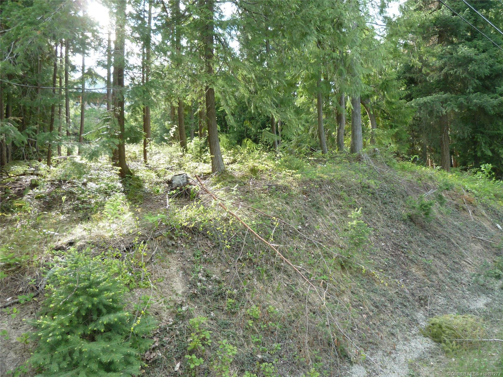 Lot 40 Forest Drive, Blind Bay, British Columbia, V0E1H1 (21432487)